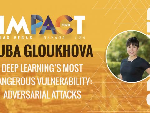 Deep Learning's Most Dangerous Vulnerability: Adversarial Attacks - Luba Gloukhova